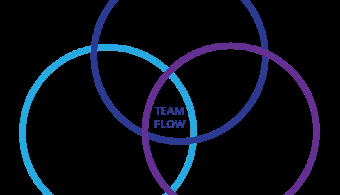 Team Fusion Team Flow diagram